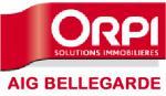 logo AIG - BELLEGARDE